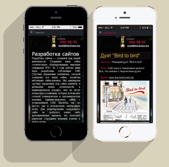 Внешний вид сайта на iPhone 5S